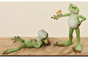 Декоративна жаба PIT