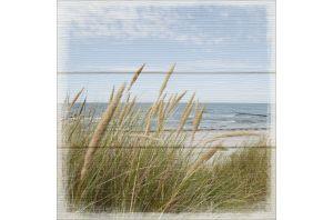 Картина Beach View III