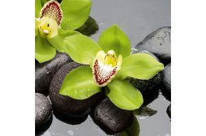 Стъклена картина водна лилия